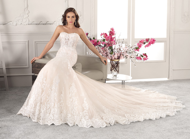 Demitrious Wedding Gowns.The Demetrios 2019 Dress Collection And Where To Get Them