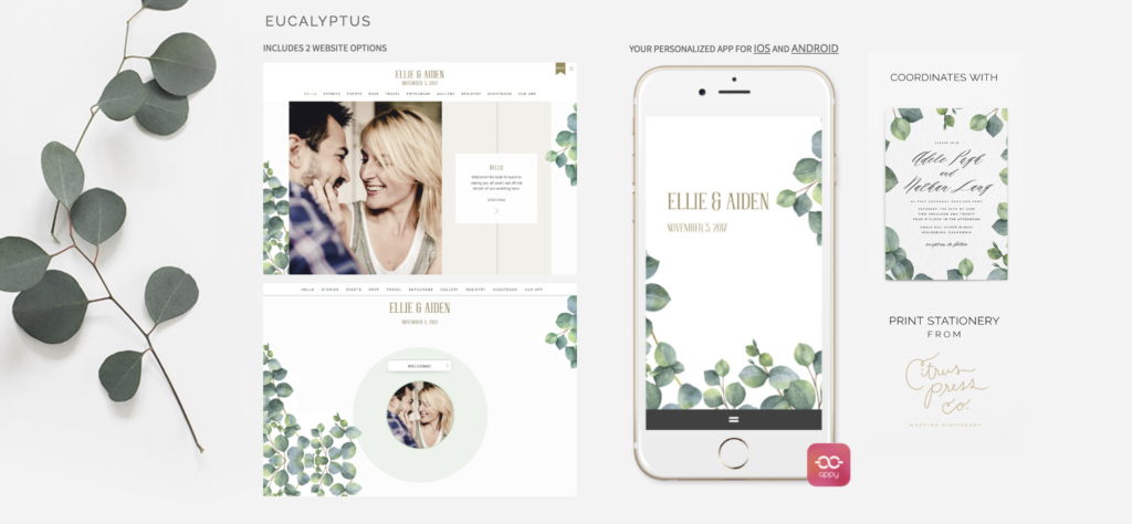 appy couple wedding websites builder